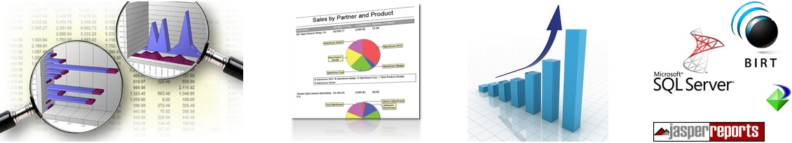 Business Intelligence Reporting in Australia